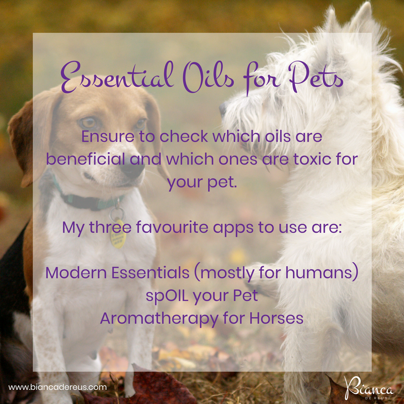 Are Essential Oils good for my Pet?